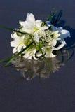 Flores en la arena mojada Fotografía de archivo libre de regalías