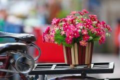Flores en la bicicleta Imagen de archivo libre de regalías