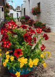 Flores en la calle en Alberobello, Italia Imagenes de archivo