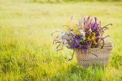 Flores en la cesta en la hierba Imágenes de archivo libres de regalías