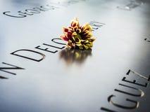 Flores en la conmemoración Imagen de archivo libre de regalías