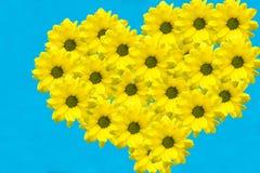 Flores en la forma de un corazón Imagen de archivo