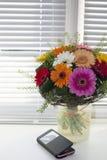 Flores en la foto de la ventana Fotos de archivo libres de regalías
