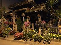 Flores en la oscuridad Fotografía de archivo libre de regalías