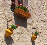 Flores en la pared Imagenes de archivo