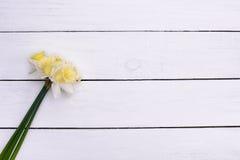 Flores en la sobremesa de madera rústica Imagenes de archivo