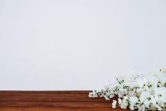 Flores en la tabla de madera y la pared blanca Fotografía de archivo libre de regalías