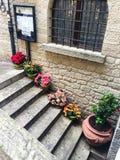 Flores en las escaleras Foto de archivo