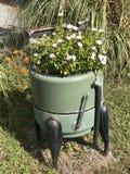 Flores en lavadora Imagen de archivo