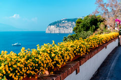 Flores en los di Sorrento del piano Foto de archivo