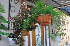 Flores en los potes suspendidos en un pórtico Foto de archivo