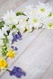 Flores en los tableros blancos Imagenes de archivo
