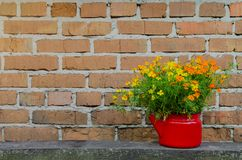 Flores en maceta en el fondo de la pared de ladrillo Imagen de archivo libre de regalías