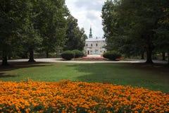 Flores en parque. imagenes de archivo