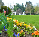 Flores en parque en la ciudad Podebrady, República Checa Foto de archivo