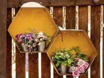 Flores en potes del metal Foto de archivo libre de regalías