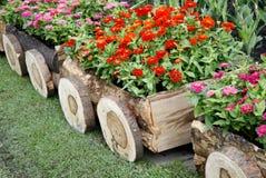 Flores en potes en caja de madera Imágenes de archivo libres de regalías