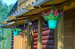 Flores en potes y campanas Fotografía de archivo