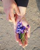 Flores en su mano Fotos de archivo libres de regalías