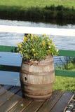 Flores en un barril Imagenes de archivo