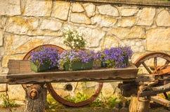 Flores en un carro Imagen de archivo libre de regalías