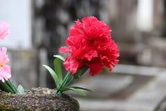 Flores en un cementerio foto de archivo