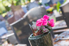 Flores en un cementerio con las piedras sepulcrales en fondo Imágenes de archivo libres de regalías