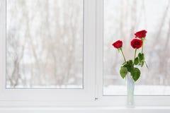 Flores en un florero Fotografía de archivo