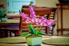 Flores en un florero en una tabla de madera foto de archivo libre de regalías