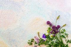 Flores en un fondo azul rosado blanco del fondo Concepto m?nimo creativo fotos de archivo