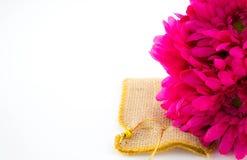 Flores en un fondo blanco Imagen de archivo