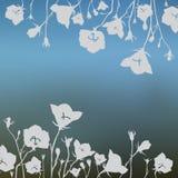 Flores en un fondo borroso Imágenes de archivo libres de regalías