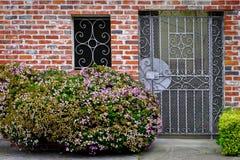 Flores en un fondo que un ladrillo contiene fotografía de archivo libre de regalías