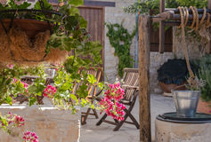 Flores en un pote en el patio Fotos de archivo libres de regalías