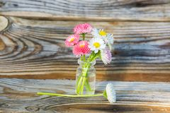 Flores en un tarro de cristal Margaritas en un tarro de cristal El fondo de los tablones viejos del pino con una textura pronunci Foto de archivo libre de regalías