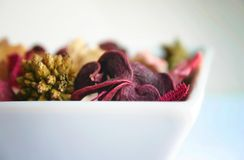 Flores en un tazón de fuente imagenes de archivo