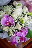 Flores en un vector Foto de archivo libre de regalías