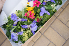 Flores en una caja Fotos de archivo