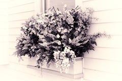 Flores en una cesta imagenes de archivo