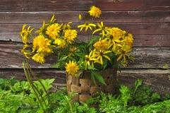 Flores en una cesta Fotos de archivo libres de regalías