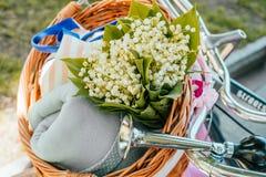 Flores en una cesta de la bicicleta imagenes de archivo