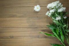 Flores en una tabla de madera Foto de archivo