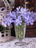 Flores en vidrio del vintage Fotografía de archivo