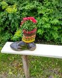 Flores en zapato Imagenes de archivo