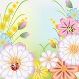 Flores encendido al prado Foto de archivo
