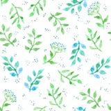 Flores, ervas, grama de prado Teste padrão sem emenda ditsy bonito Watercolour do vintage Imagem de Stock Royalty Free