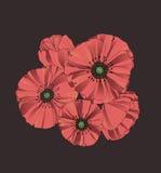 Flores estilizados da papoila Fotografia de Stock Royalty Free