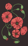 Flores estilizados da papoila Imagem de Stock