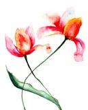 Flores estilizados das tulipas Imagens de Stock