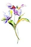 Flores estilizados dos tulips Fotografia de Stock Royalty Free